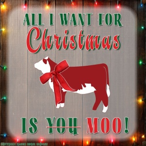 mooy christmas (2)
